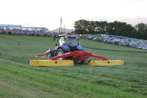 Grassland demonstration in Slovenia