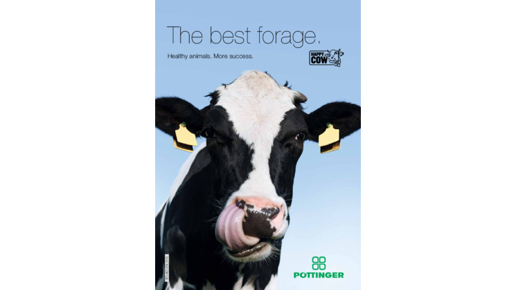 Brochure: The best forage